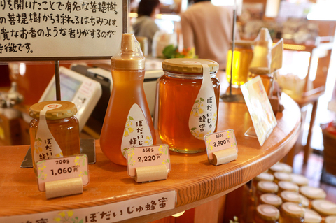 hamanako019.jpg