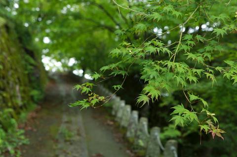 yoshino_fuukei_02.jpg